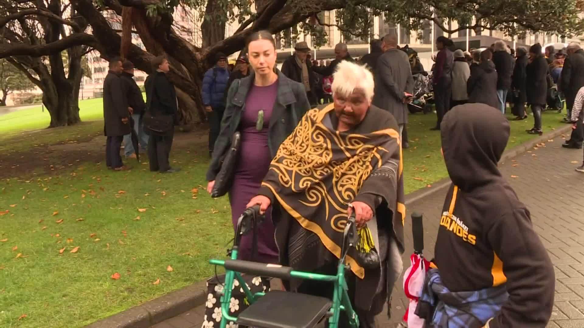 Video for Ngāti Whātua Ōrākei address tikanga issue in court
