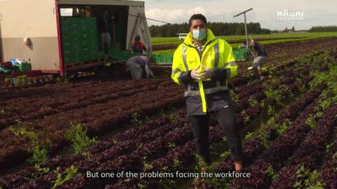 Video for Tūranga Health protects essential workers from sickness
