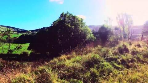 Video for Ngā Pari Kārangaranga,  Ngā Rākau Tupuna, Series 7 Episode 1
