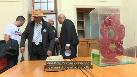 Video for Māori Party  'carkoi' reaches  final destination
