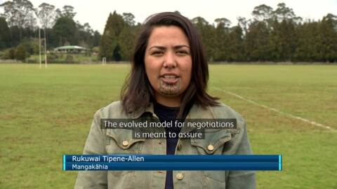 Video for Ngāpuhi negotiations a priority for Little