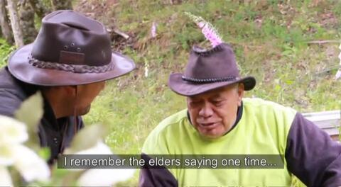 Video for Ngā Pari Kārangaranga, Te Urewera, Series 4 Episode 9
