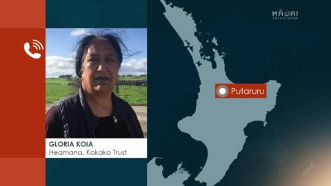 "Video for Govt's primary sector led plan to reduce emissions is ""all back to front,"" says Māori farmer"