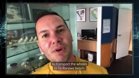 Video for Kawekōrero, 3 Ūpoko 196