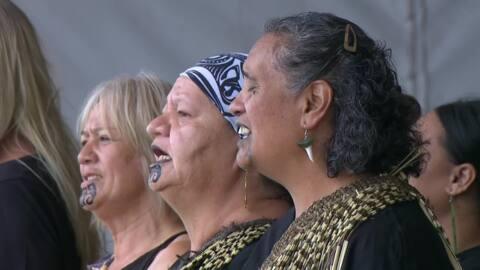 Video for 2020 Kapa Haka Regionals, Ngā Pākeke o Ngāti Kahungunu ki Heretaunga, Waiata Tira