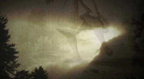 Video for Te Pātaka Kōrero, 3 Ūpoko 13
