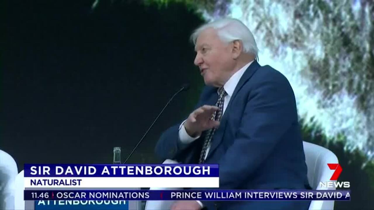Sir David Attenborough told Prince William we also need to work to save the planet during an interview at the World Economic Forum