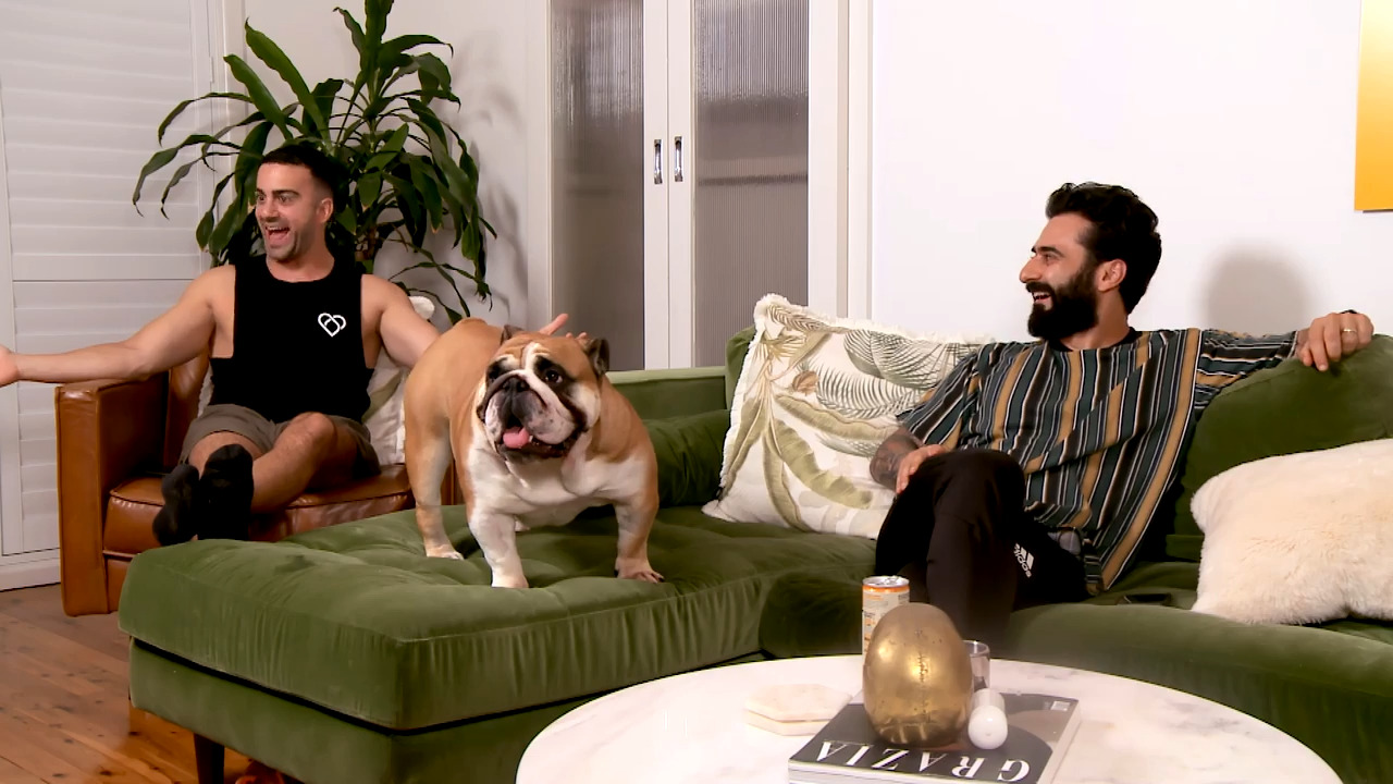 Thumbnail of Gogglebox Australia, Season 12, problems with dogs