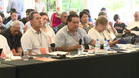 Video for Top Māori leaders to speak at Emergency Climate Change Summit