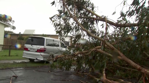 Video for  Power outages, flight disruptions and schools closed across Auckland