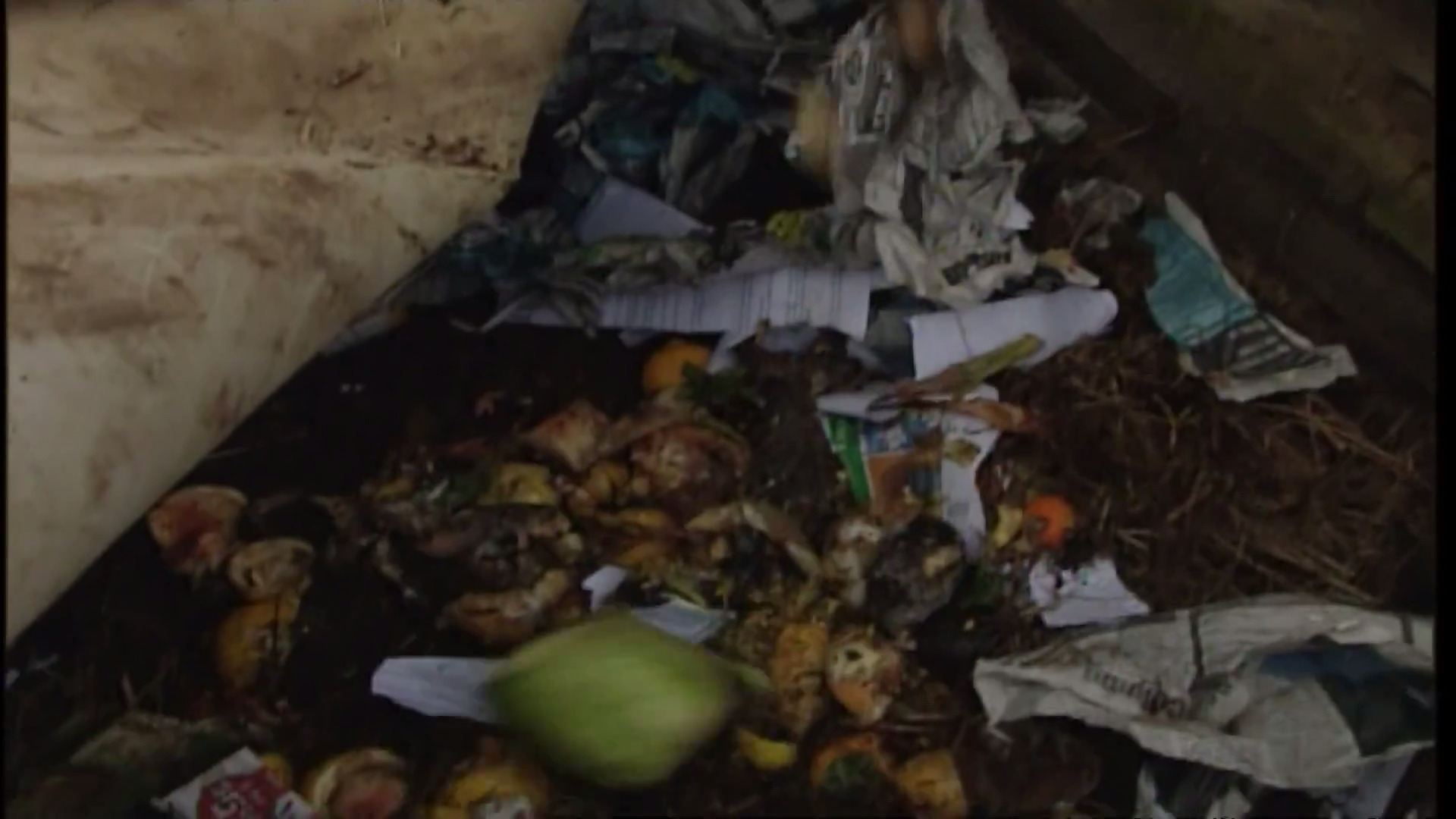 Video for Food scraps bin collection to start in Papakura