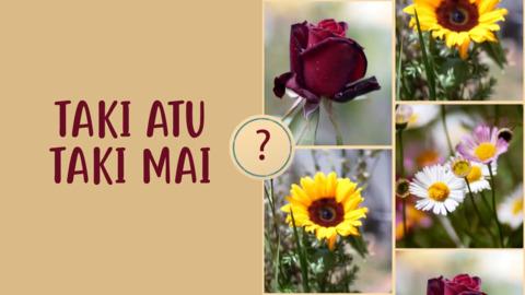 Video for Taki Atu Taki Mai, Episode 16