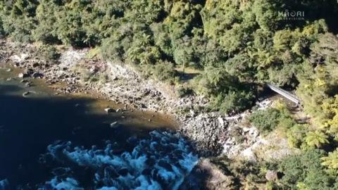 Video for Ngāti Waewae unveil first pou at Kahurangi National Park