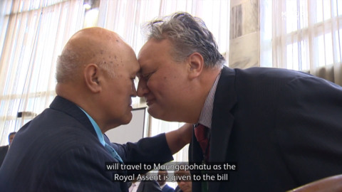 Video for Tūhoe descendants arrive to Parliament