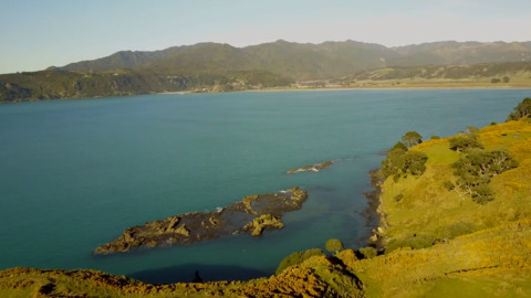 Video for Wharekahika locals against new Port development
