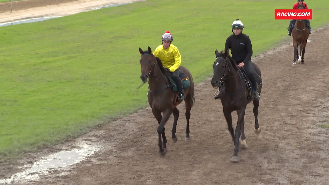 Quiet hit-out for baby Caviar