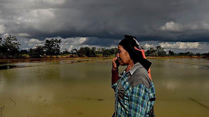 Thai farmers joyful after boys' rescue despite flooded crop