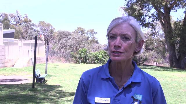 Shenton Park Dogs' Refuge Home looks to find families for 1300 dogs every year.