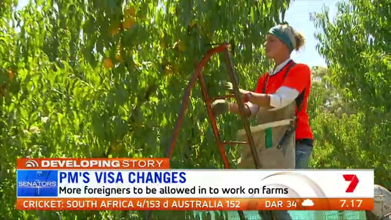 Derryn Hinch and Pauline Hanson agree with plans to relax visa rules for foreigners to work on farms