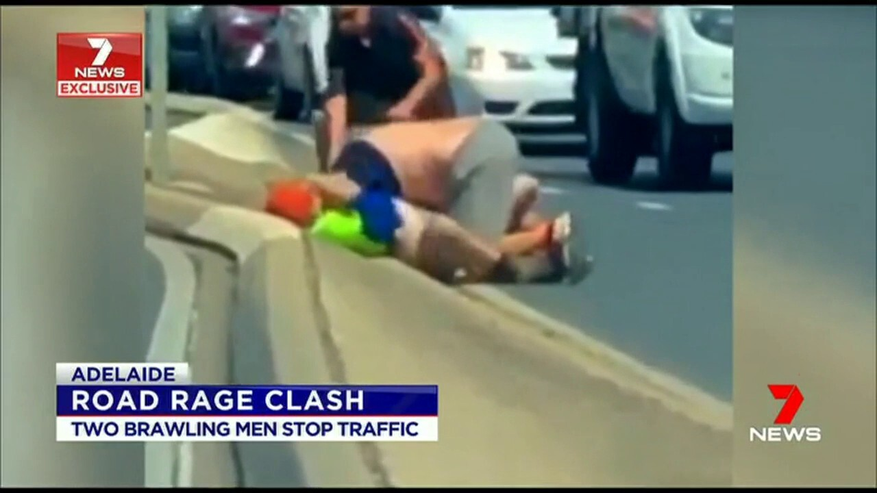 Two men have stopped Adelaide after they began kicking and punching each other in the middle of a road in Adelaide.