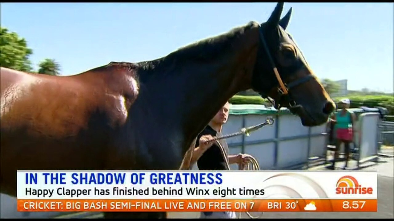 The 8-year-old gelding is Australia's second favourite horse and has finished behind Winx eight times