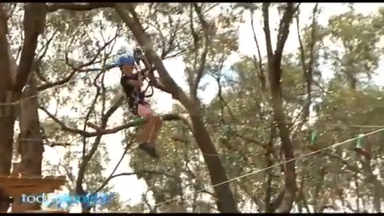 Yanchep Trees Adventure has opened to the public, allowing people to fly, climb and jump through the trees.