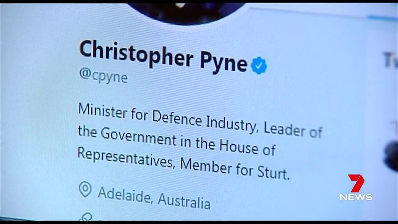 The incident involves Christopher Pyne's Twitter and a gay sex video.