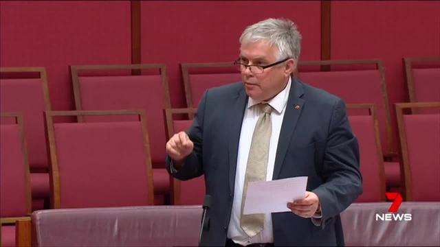 Pauline Hanson held the attention of the Upper House for 20 minutes but is still yet to show which way she will vote.