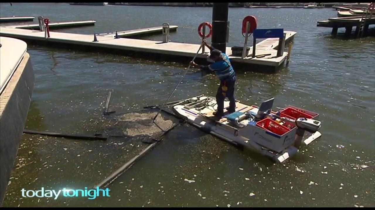 A specialist team each take turns to scoop up the litter than floats into the quay.
