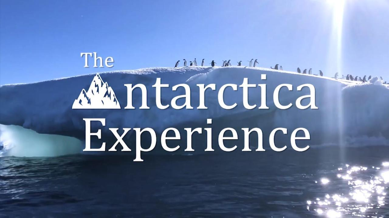 The Antarctica Experience is showing with the support of WA Museum until October 14 at the WA Maritime Museum at Victoria Quay, Fremantle.