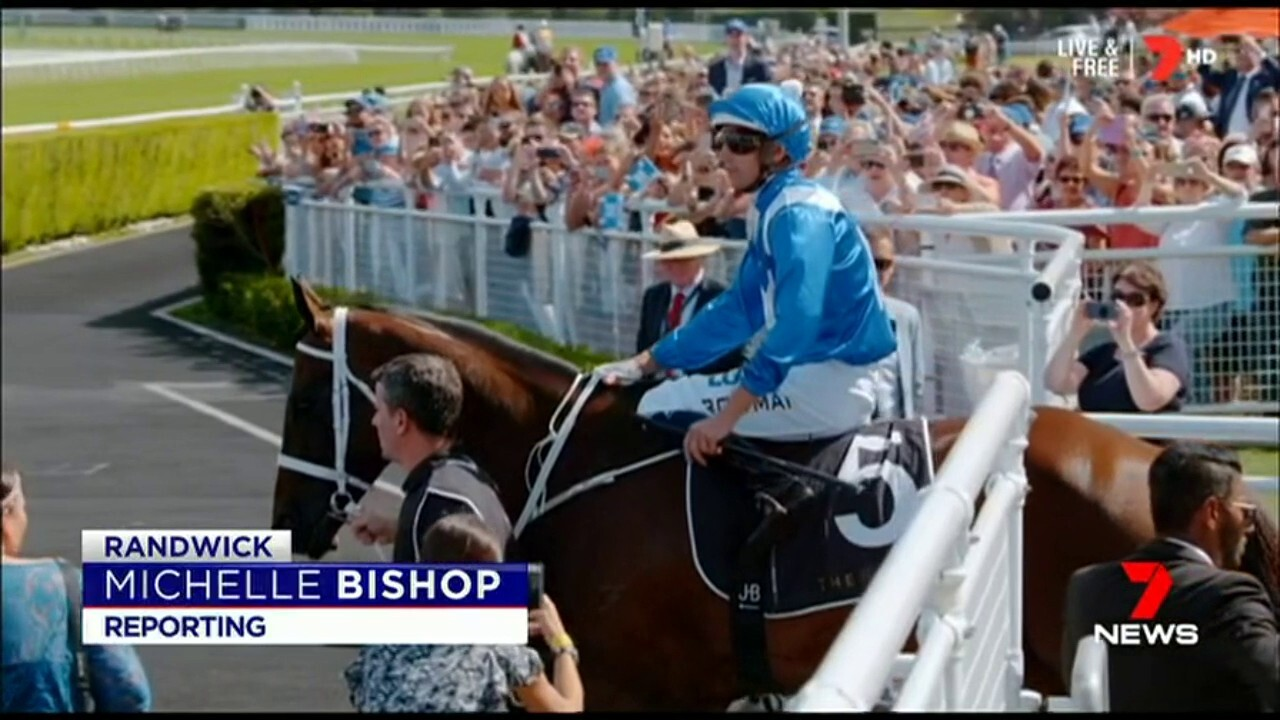The champion mare has become the first horse in the southern hemisphere to win thirty races in a row.