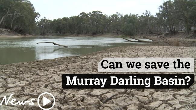 River Murray: Potential for algal blooms, blackwater and