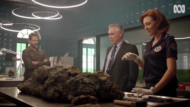 Harrow Season 2: Jolene Anderson joins cast for new season