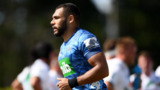Marchant to stay at Blues