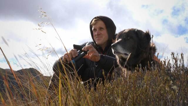 Ajax the Kea Conservation Dog