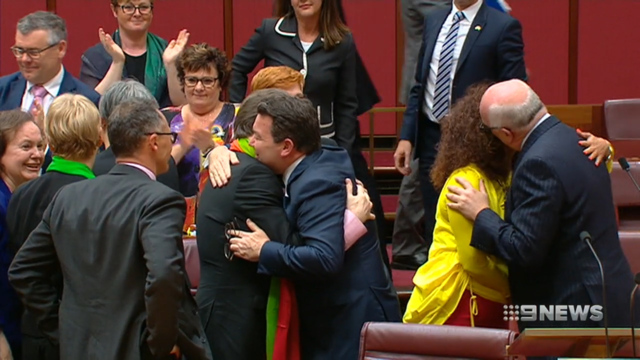Australian MP Tim Wilson proposes during same-sex marriage debate
