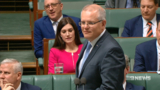 Minority government leaves PM in trouble