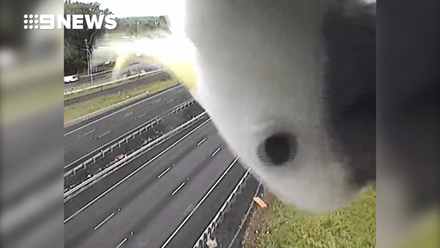 Curious cockatoo makes appearance on traffic camera in Australia