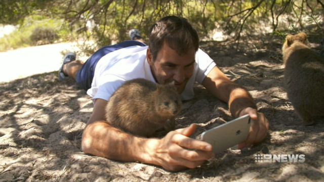 Tennis star Roger Federer makes friends with Rottnest Island quokka