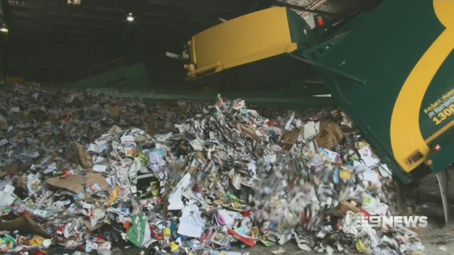 No more yellow bins: Ipswich ditches recycling over rising costs