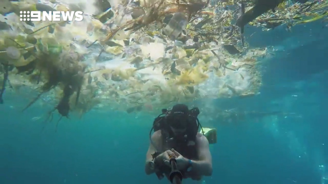 Diver films himself swimming through ocean of plastic