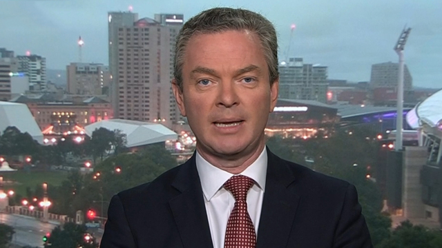 Pyne 'hacked' on liking of pornographic tweet