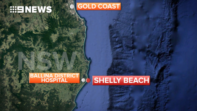 Surfer uses board to fend off shark attack