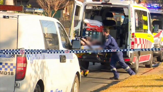 Brothers critical after Whalan stabbing