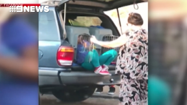 USA  woman arrested after children filmed in auto  in pet kennels
