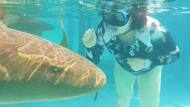 Breathe underwater without scuba gear - 9Travel